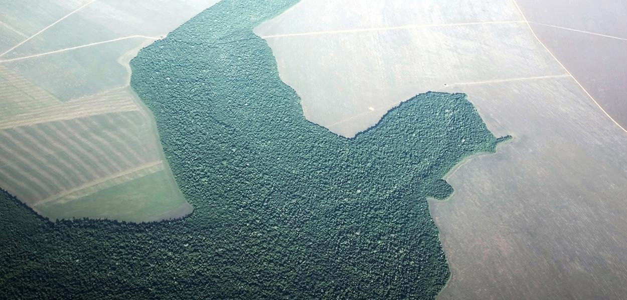 Imagem aérea de desmatamento na cidade de Alta Floresta, no Pará.