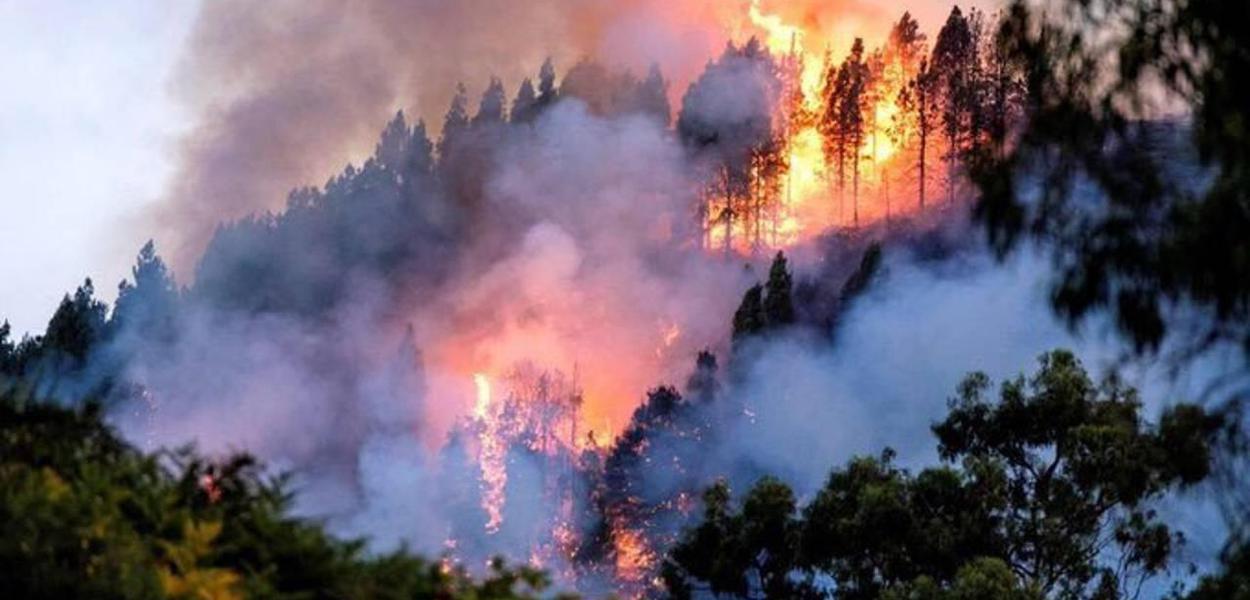 Amazônia, incêndios