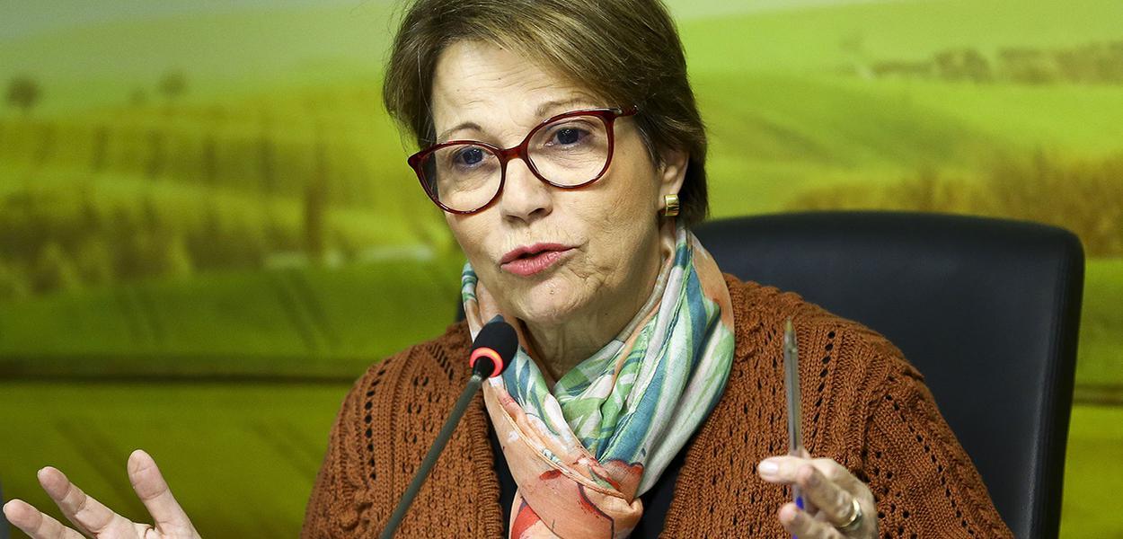 A ministra da Agricultura, Pecuária e Abastecimento, Tereza Cristina