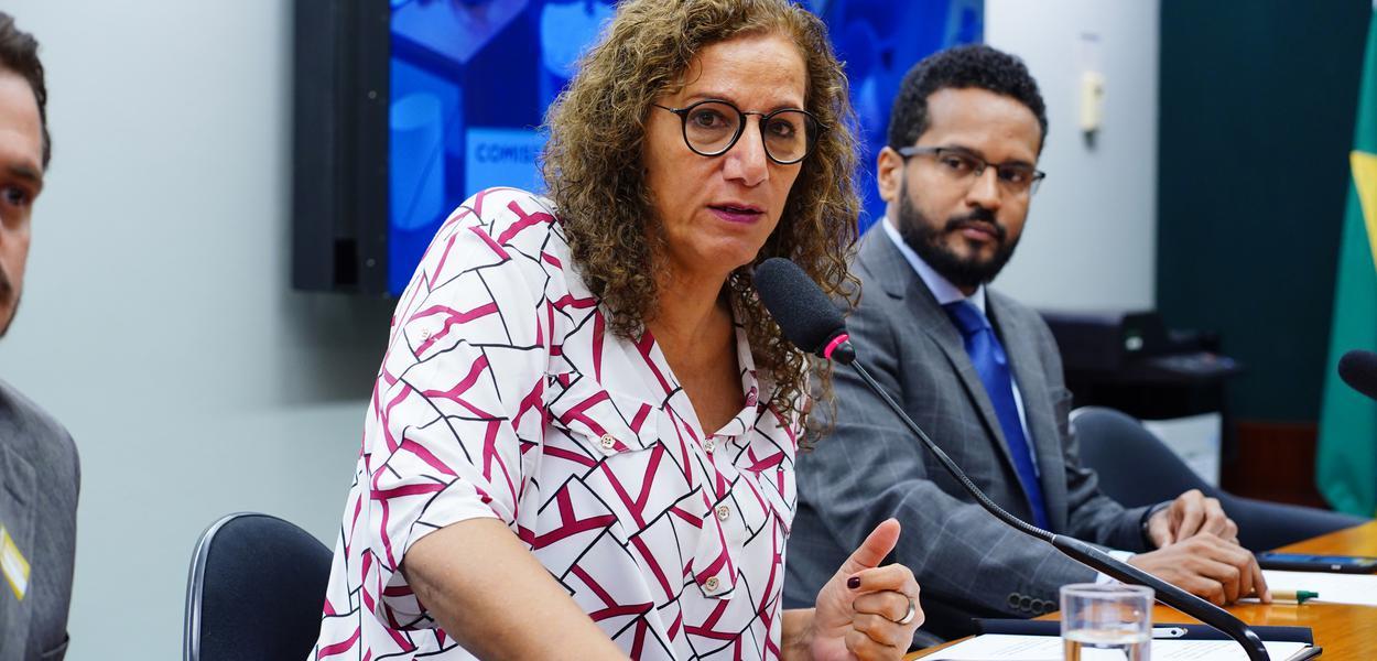 Líder da Minoria, Jandira aciona Maia para Câmara intervir na invasão da embaixada da Venezuela - Brasil 247
