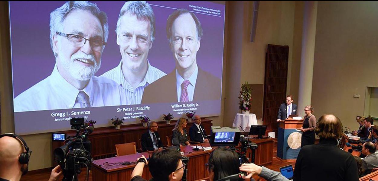 Anúncio dos ganhadores do Nobel de Medicina