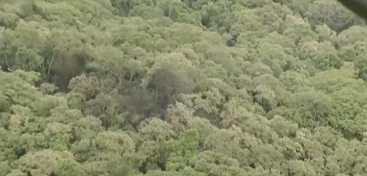 Aeronave cai na Serra da Cantareira em São Paulo
