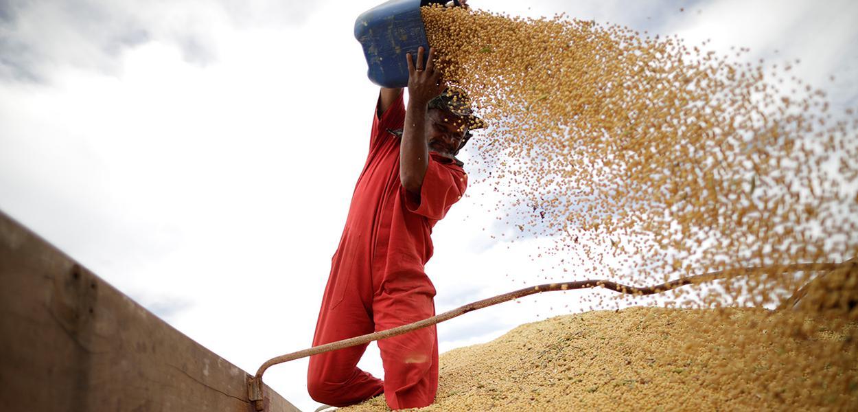 Homem manuseia grãos de soja durante estação da colheita perto da cidade de Campos Lindos