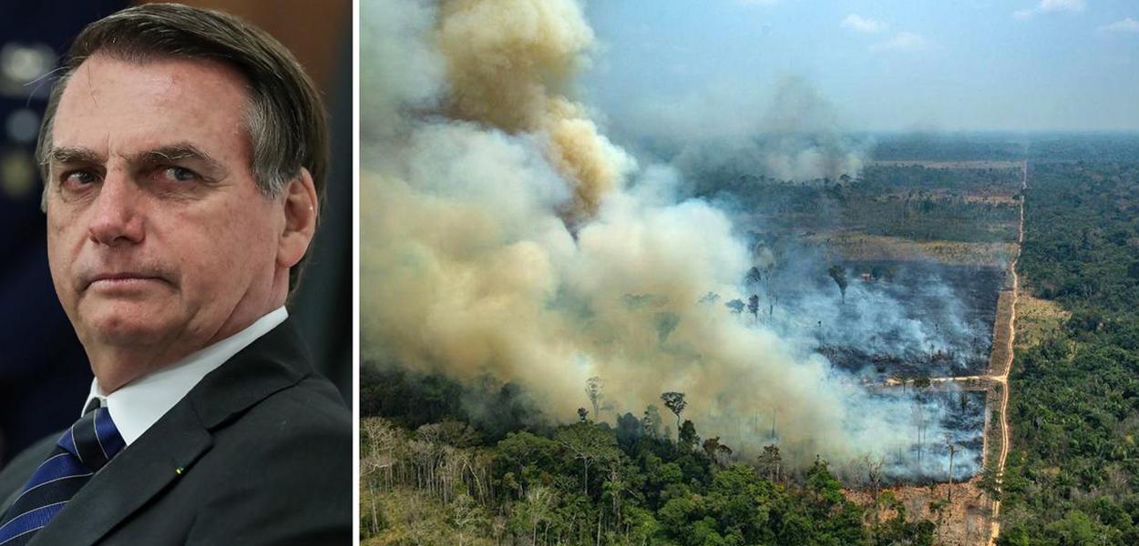 Jair Bolsonaro e floresta sendo desmatada