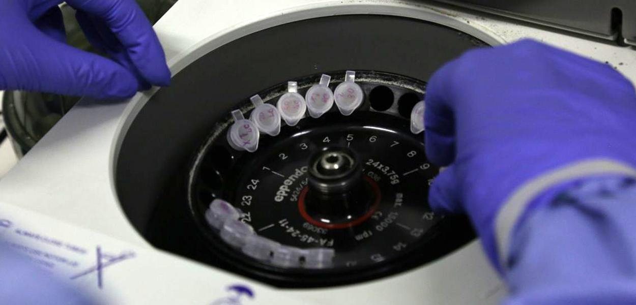 Coronavírus pode ter tido origem em laboratório.