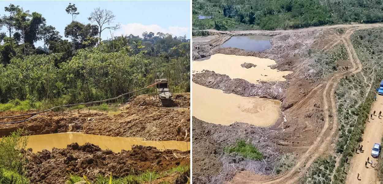 Desmatamento gerou repercussão no exterior e aumentou o risco de boicote ao País