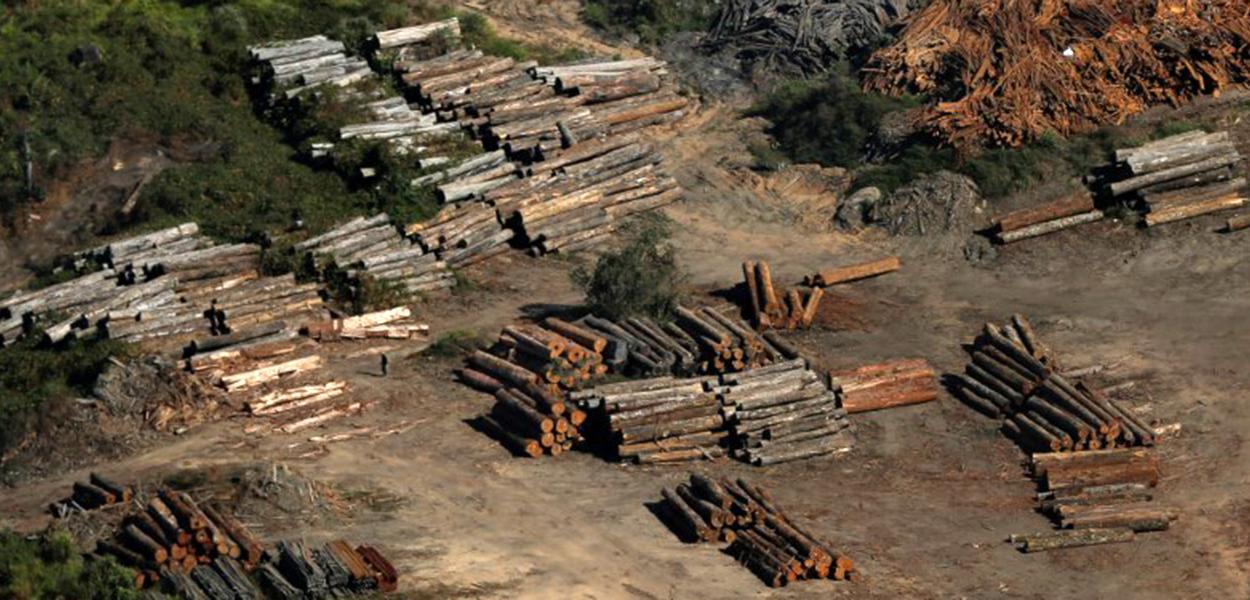 Desmatamento ilegal em Apuí, no Amazonas
