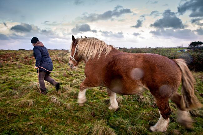 Mulher e cavalo da ilha de Ouessant, na França