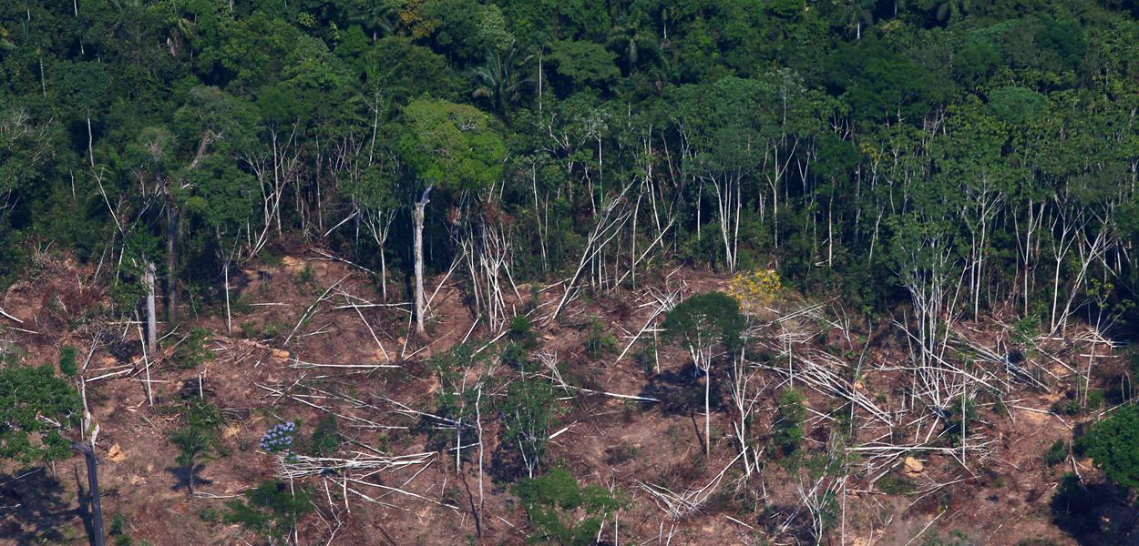 Área desmatada da floresta amazônica em Novo Progresso, no Pará