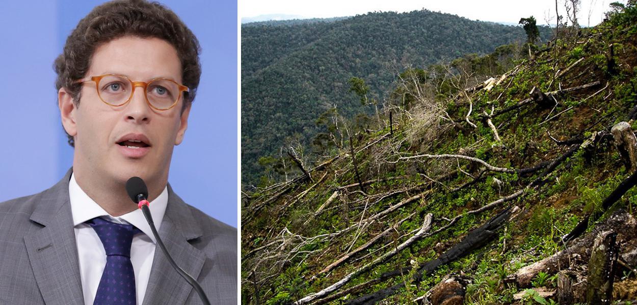 Ricardo Salles e desmatamento da Mata Atlântica