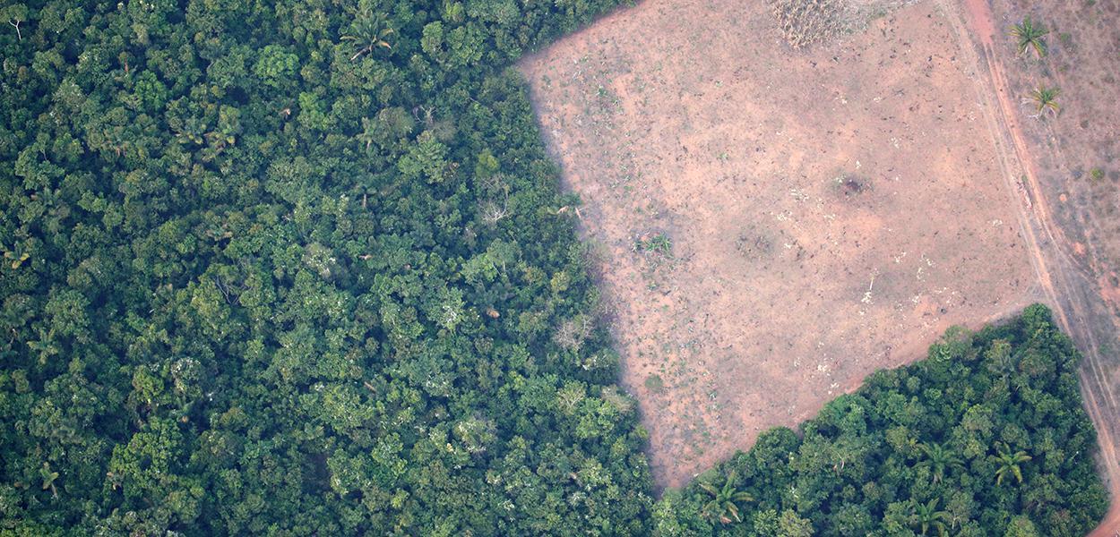 Vista de área desmatada da floresta amazômica perto de Porto Velho 21/08/2019
