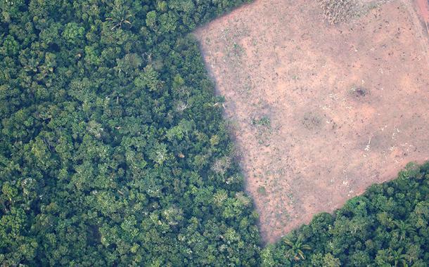 Vista de área desmatada da floresta amazônica perto de Porto Velho