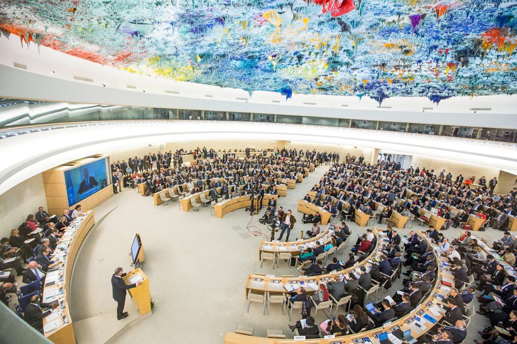 Conselho de Diteitos Humanos da ONU