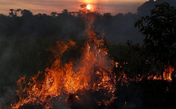 Queimadas aumentam no Amazonas