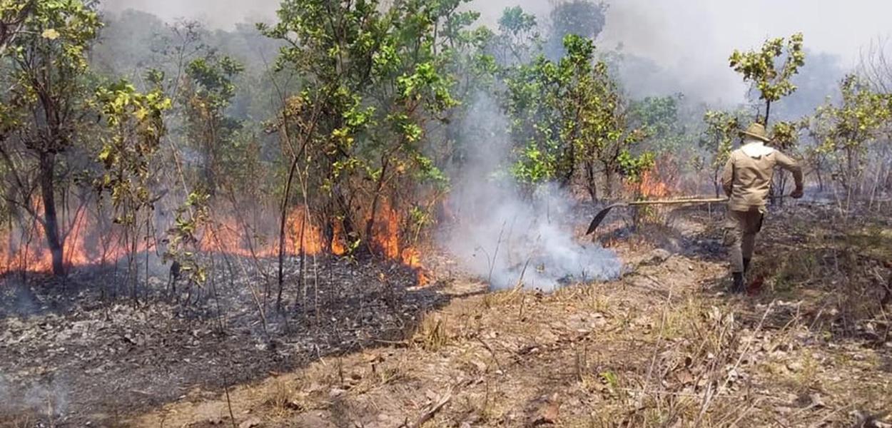Estado do MS tem mais de 1,4 milhão de hectares destruídos por queimadas