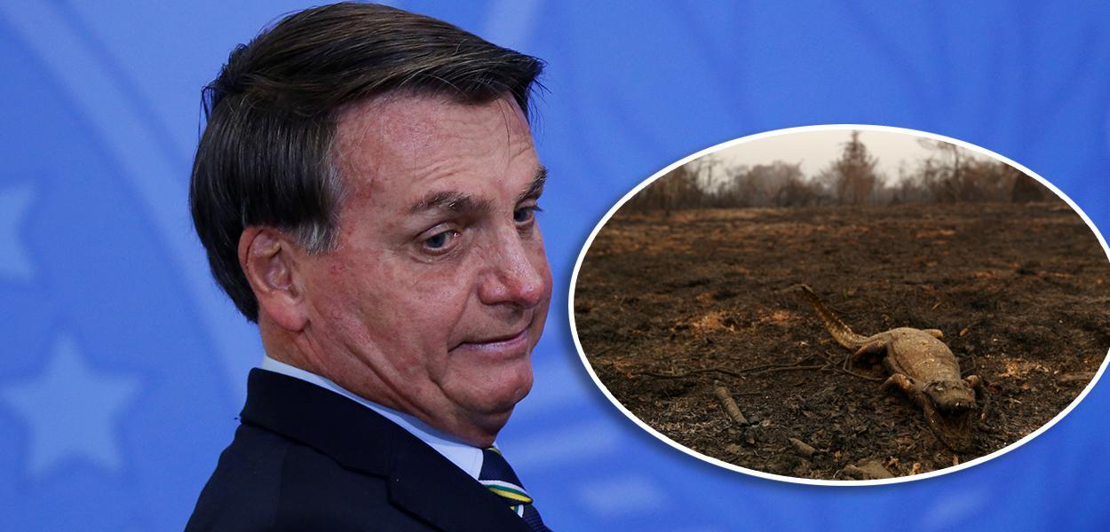 Bolsonaro e jacaré queimado no Pantanal