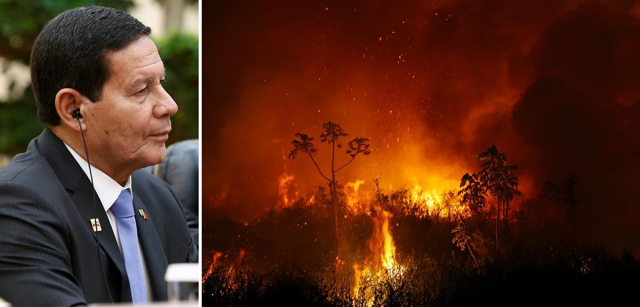Mourão e chamas de queimada no Pantanal