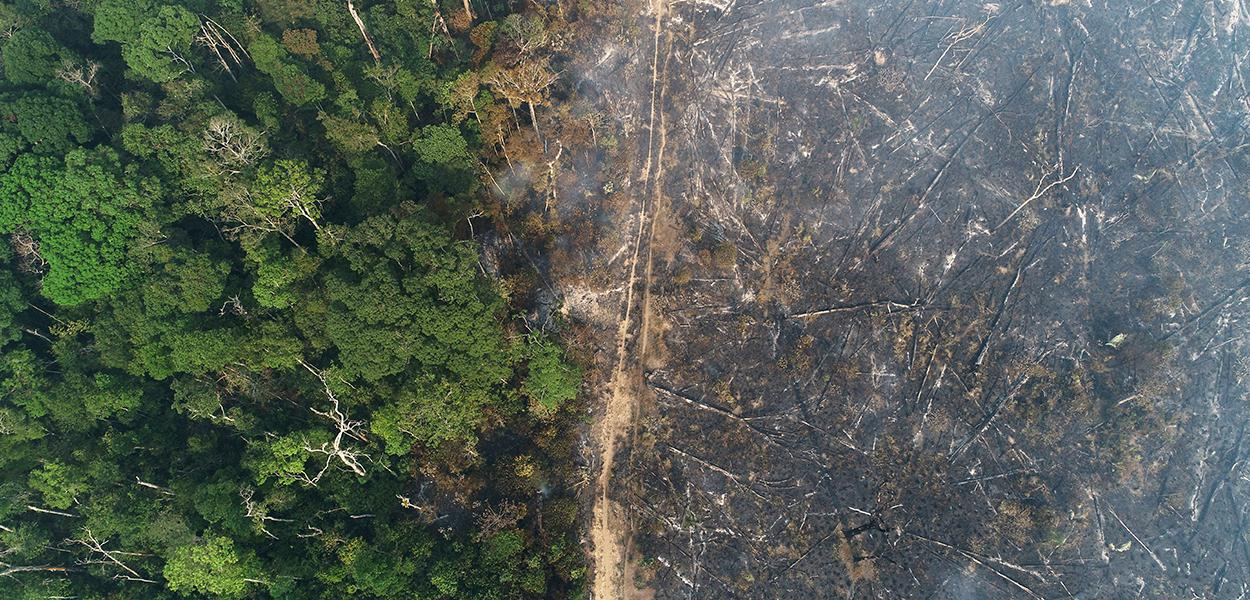 Vista aérea da Amazônia após queimadas perto de Apuí, no Amazonas