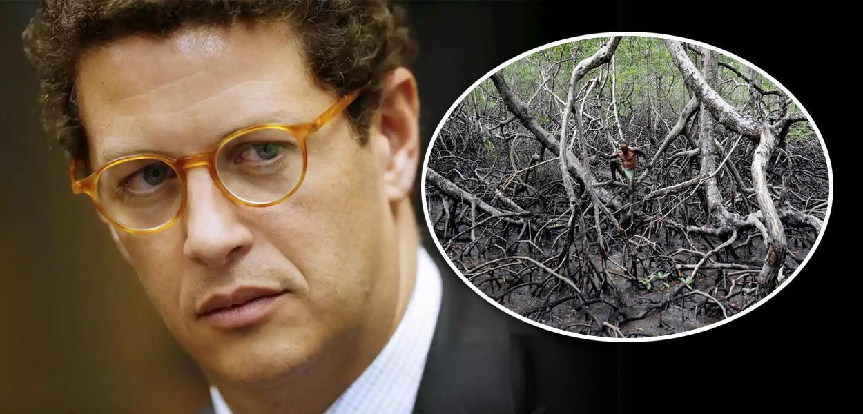 Ricardo Salles e manguezal