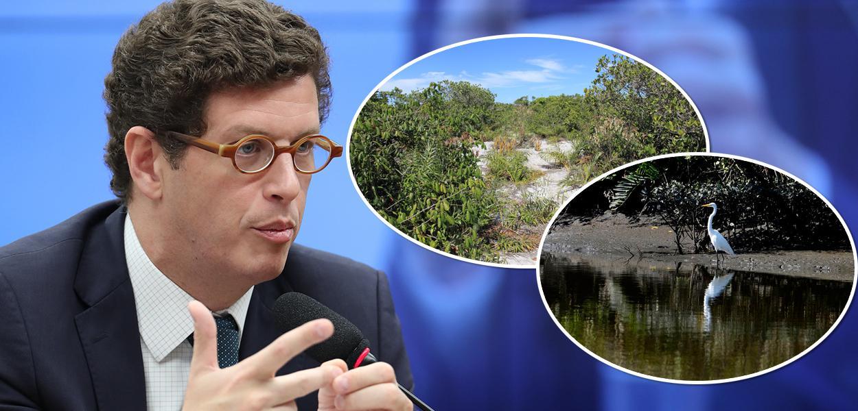Ricardo Salles, e imagens de restinga e manguezal