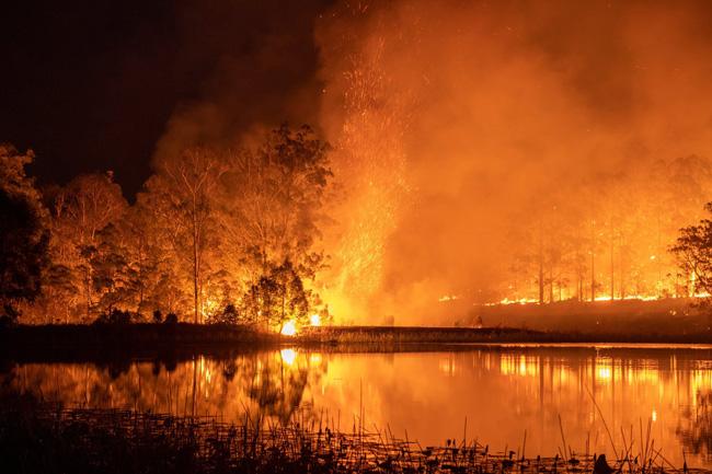 Crime ambiental: incendiários