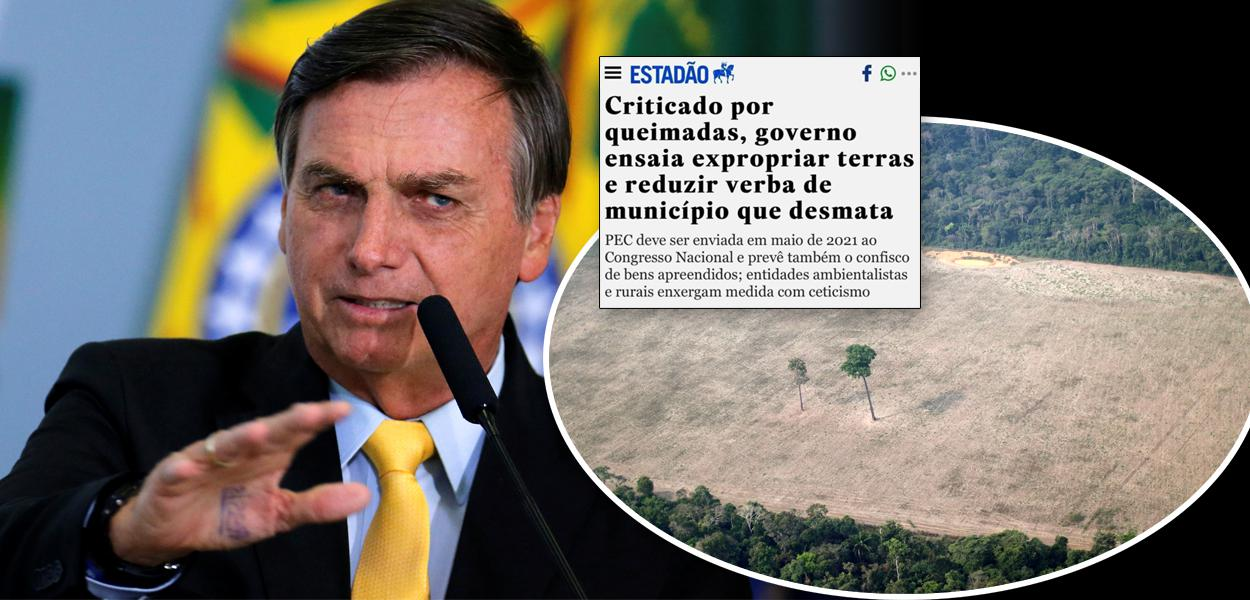 Jair Bolsonaro e desmatamento