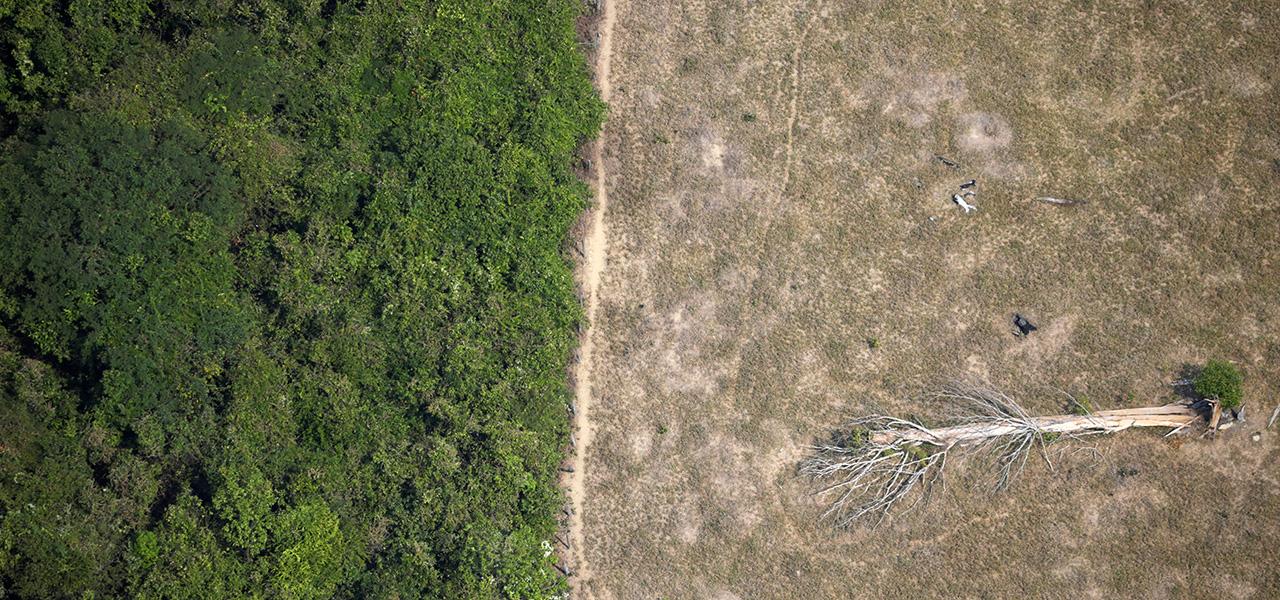 Área desmatada da Amazônia perto de Porto Velho, em Rondônia