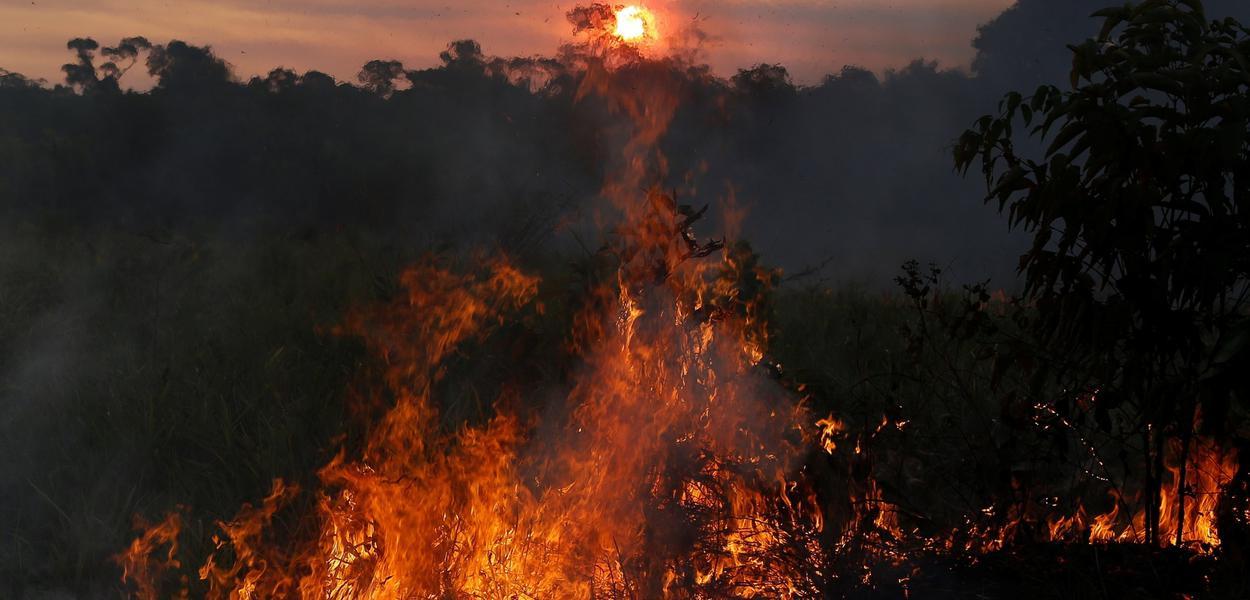 Queimadas no Amazonas