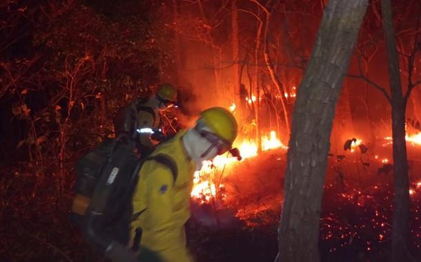 Bombeiros combatendo o fogo no Pantanal de MS