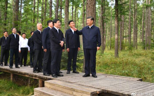 Xi Jinping em visita a região florestal