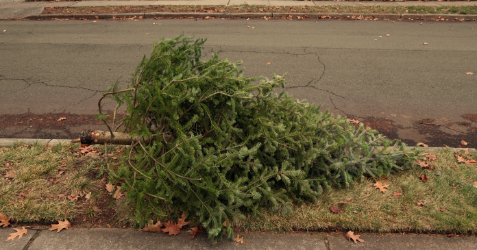 Click on the When Does Christmas Actually End? link to read more.