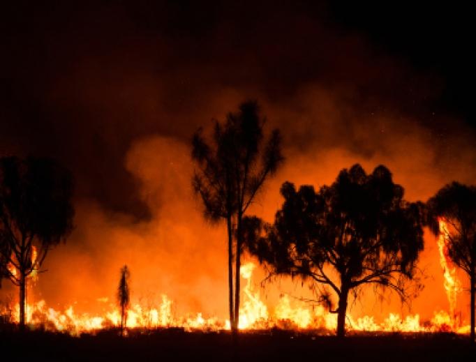 Bushfire burning in Australia.