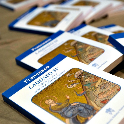 Copies of Pope Francis' encyclical Laudato Si are displayed prior to the start of a press conference, at the Vatican on June 18.
