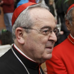 Cardinal Justin Rigali of Philadelphia placed 21 priests on administrative leave from their clerical assignments March 7 as the Philadelphia Archdiocese continues to investigate allegations of clerical sexual abuse. He is pictured during a reception at the Nov. 20 Vatican consistory at which he was made a cardinal.