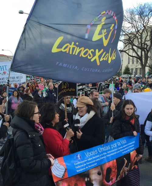 Members of Latinos por la Vida participate in the 2015 March for Life on Jan. 22 in Washington.