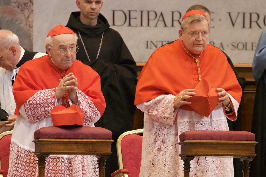 Cardinal Walter Brandmüller and Cardinal Raymond Burke pictured at a Pontifical High Mass in St. Peter's basilica to mark the 10th anniversary of Summorum Pontificum, Sept. 16, 2017.