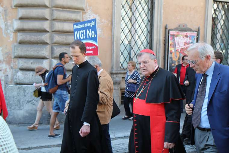 Cardinal Raymond Burke, prefect emeritus of the Apostolic Signatura, at the March for Life in Rome, May 10, 2015.