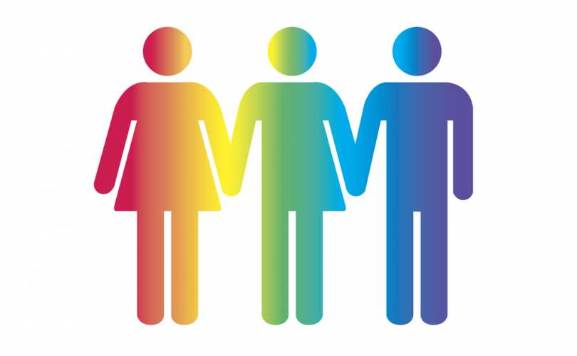 Click on the Transgenderism: A State-Sponsored Religion? link to read more.