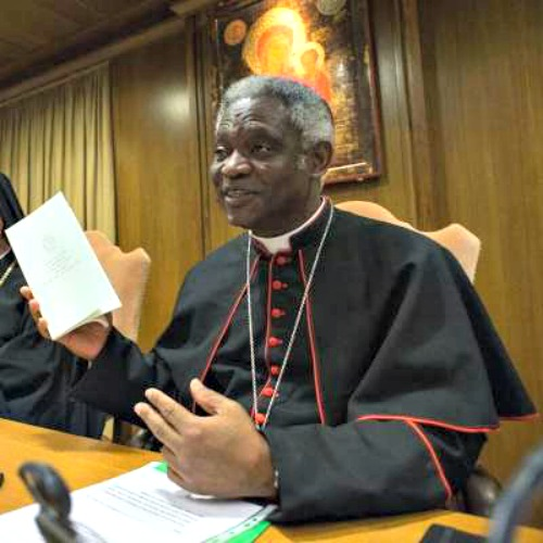 Cardinal Peter Turkson discusses Pope Francis' encyclical Laudato Si at a June press conference at the Vatican.