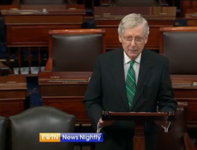 Senator Majority Leader Mitch McConnell speaks on the Senate floor, July 24, 2019.