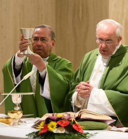 Pope Francis (r) celebrates Mass July 4 at the Vatican's St. Martha House.