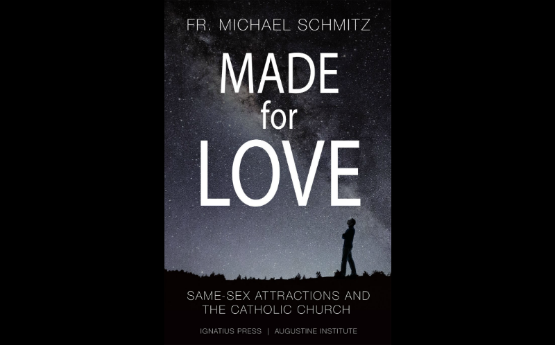 The Book Made for Love by Fr. Mike Schmitz