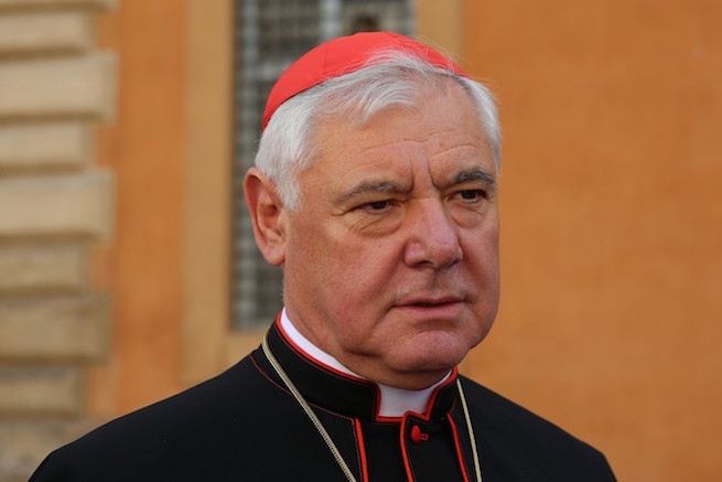 Cardinal Gerhard Müller, prefect of the Congregation for the Doctrine of the Faith.