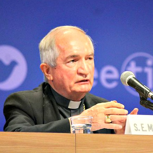 Archbishop Silvano Tomasi, permanent observer of the Holy See to the U.N., speaks at the Rimini meeting Aug. 25.