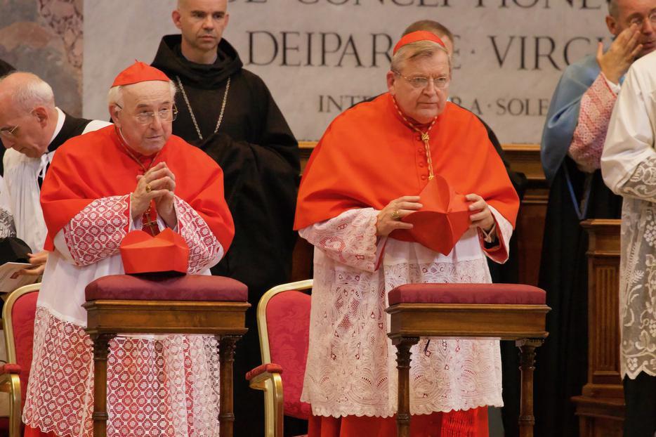 Cardinal Walter Brandmüller and Cardinal Raymond Burke