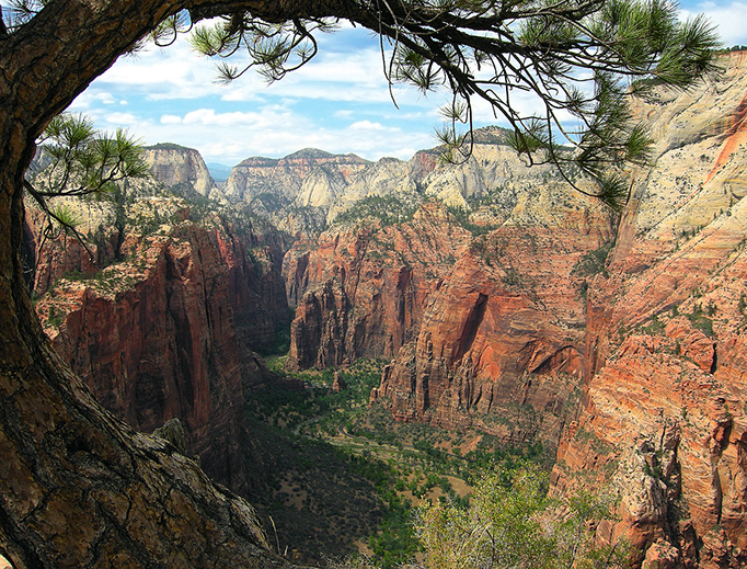 The view from the Angels Landing trail looking northward to the Narrows, Zion National Park, Utah