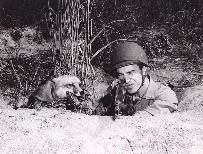 'Fox-Hole Buddies, 14 October 1943'