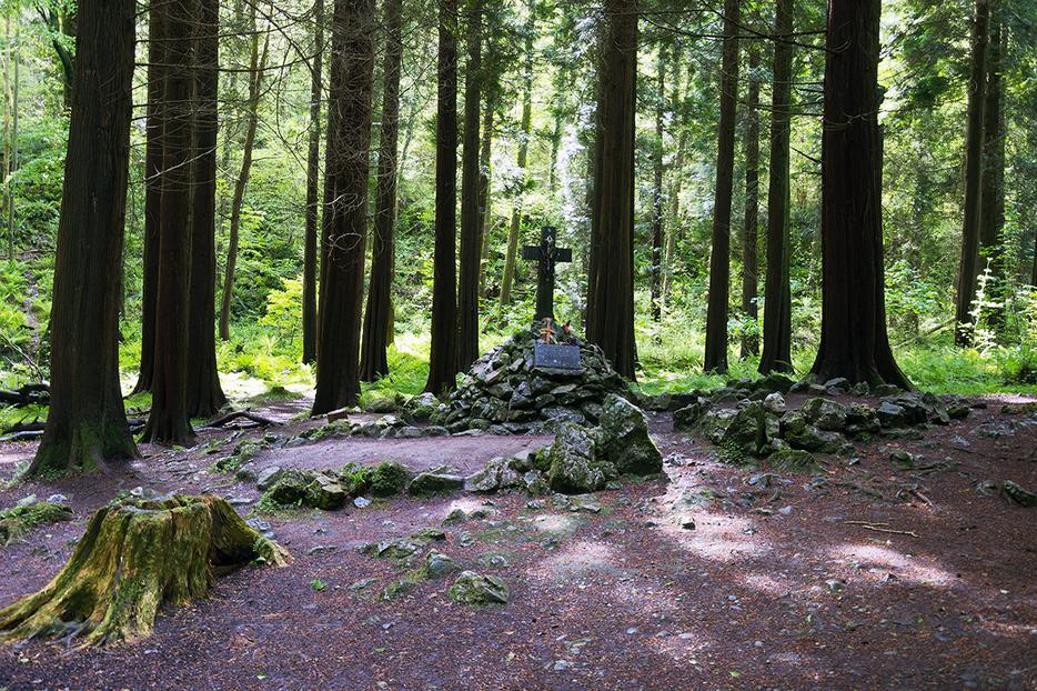 A Mass rock in a forest in Ireland