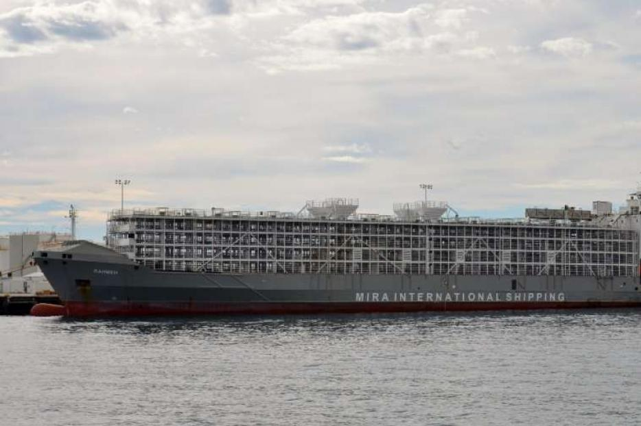 The livestock carrier Gulf Livestock 1, pictured in 2016.