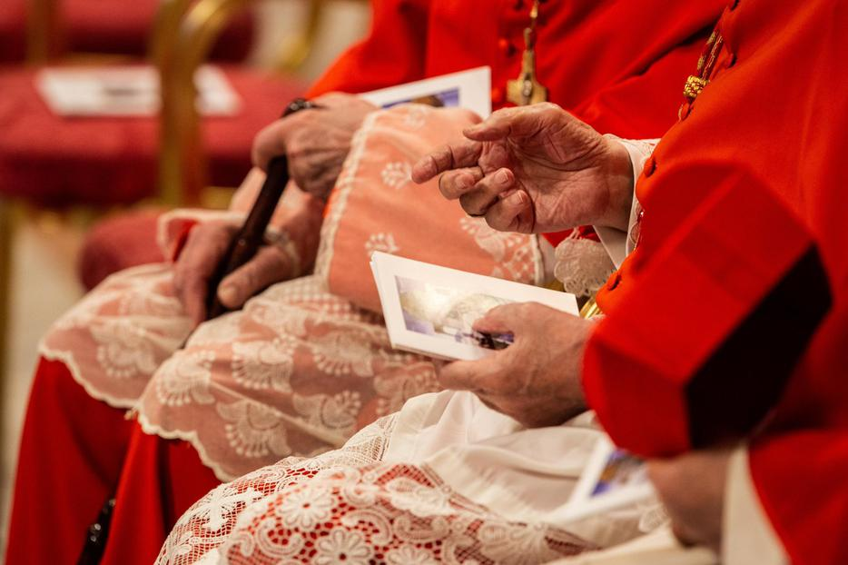 Cardinals at the Ordinary Public Consistory for the Creation of New Cardinals in St. Peter's Basilica on Oct. 5, 2019.